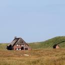 Landschaft_215