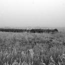 Landschaft_39