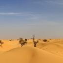 ABU DHABI_33